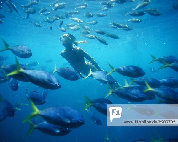 Frau Schnorcheln  underwater view