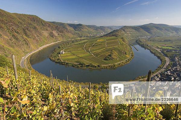 Erhöhte Ansicht des River Bend  Mosel  Bremm  Rheinland-Pfalz  Deutschland Erhöhte Ansicht des River Bend, Mosel, Bremm, Rheinland-Pfalz, Deutschland