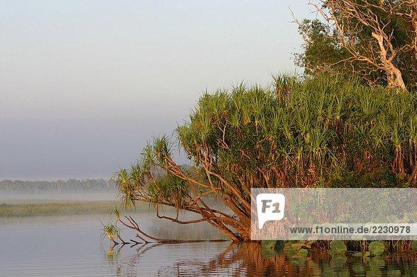 Australia: Kakadu National Park