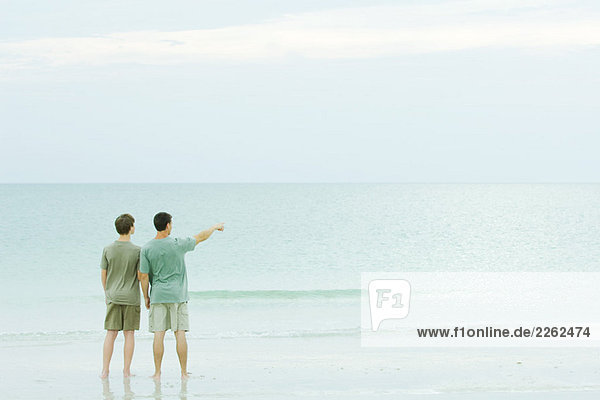 Father and son standing together at the beach  looking at view  one pointing