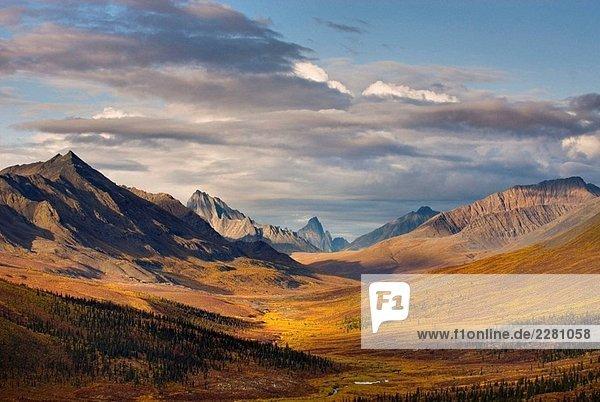 North Klondike River Valley lebendige Farben von Herbstlaub  Tombstone Territorial Park  Yukon  Kanada North Klondike River Valley lebendige Farben von Herbstlaub, Tombstone Territorial Park, Yukon, Kanada