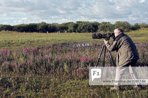 Fotograf  Marquenterre Regionalpark. Somme-Bucht  Picardie  Frankreich