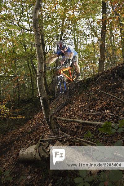 Herbst-Mountainbike