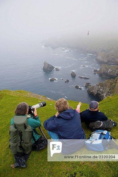 Klippen Hermaness National Nature Reserve. Unst Island  Shetland-Inseln. Schottland. UK.