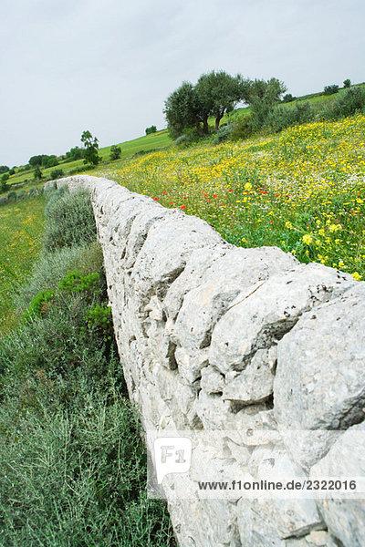 niedrig Steinmauer Landschaft