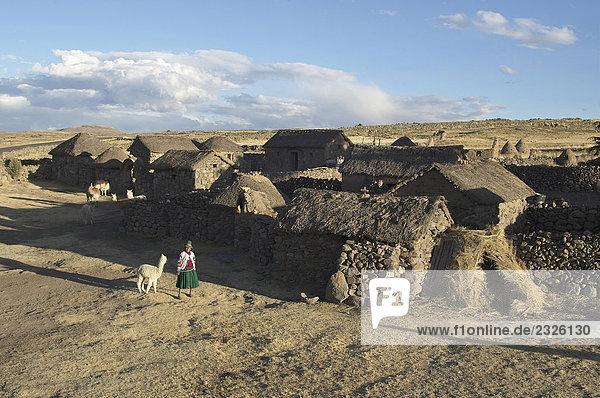 Peru  South America  Titicaca Lake traditional farm