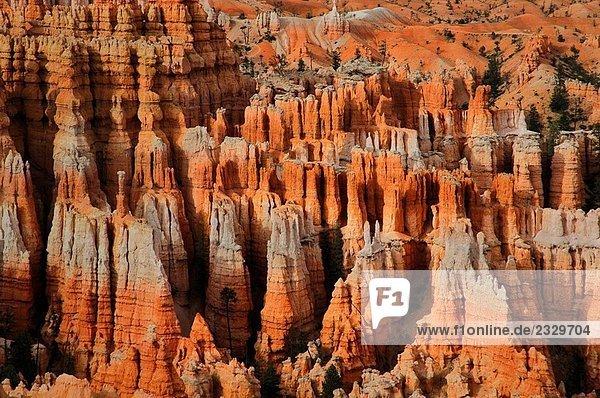 Bryce Canyon Utah Amerika usa Bryce Canyon Utah Amerika usa