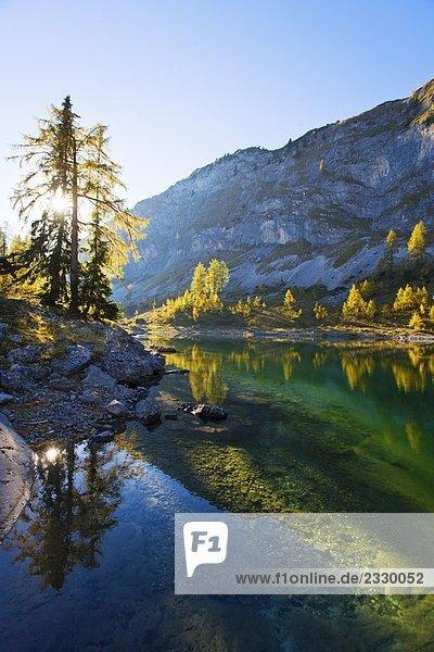 Reflexion der Bäume in Wasser  Vorderer Lahngangsee  Ausseer Land  Totes Gebirge  Salzkammergut  Österreich