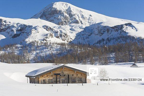 Bauernhof auf polar Landschaft  Gotzenalm  Kahlersberg  Berchtesgadener Alpen  Bayern  Deutschland