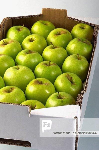 Apfel Apfelsorte