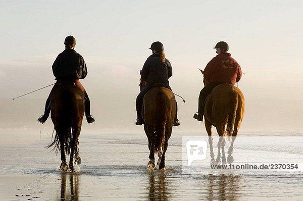 Drei Menschen Reitpferde am Ynyslas Strand  Borth  Ceredigion  Westwales  Januar Nachmittag