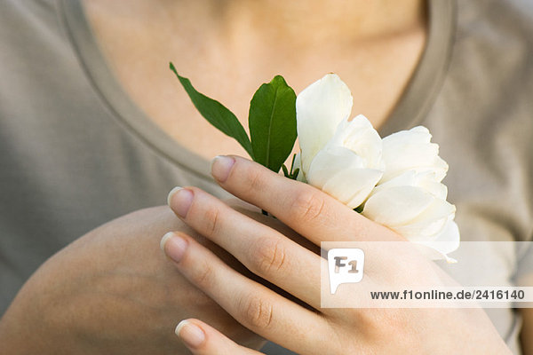 Woman holding white flowers  close-up of hands