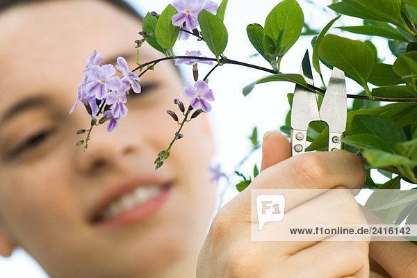 Junge Frau Abschneiden Sprig der Blumen