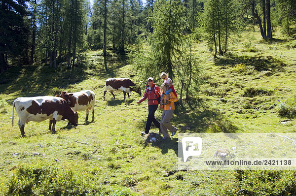 Austria  Salzburger Land  couple with daughter (6-7) hiking