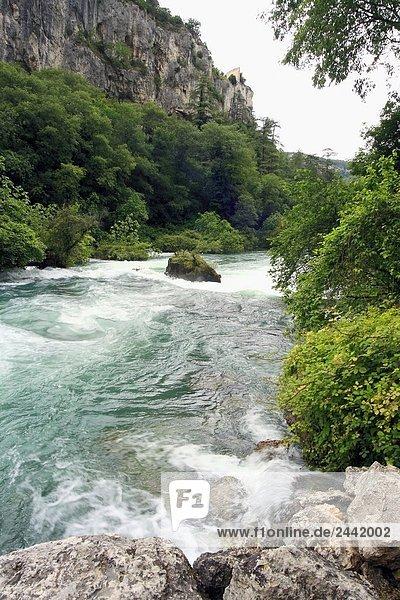 Fluss  der durch Wald  Fontaine de Vaucluse  Provence-Alpes-Côte d ' Azur  Frankreich