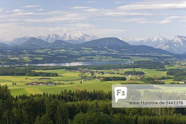 Gebäude Stadt Ansicht Luftbild Fernsehantenne Österreich Flachgau Salzburg Wallersee