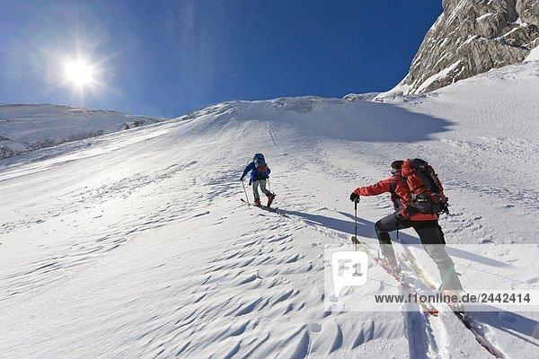 Rückansicht des zwei Skifahrer zu Fuß mit den Skiern auf verschneiten Berg  Knallstein  Tennengebirge  Tennengau  Salzburg  Österreich
