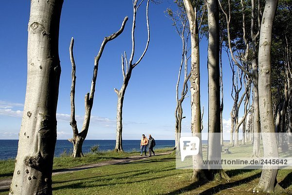 Paar walking im Wald am Meer