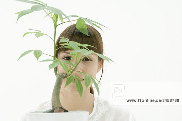 Woman looking through leaves of potted plant  portrait