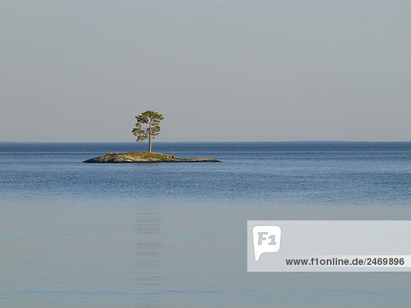 Insel im See  Lake Vattern  Granvik  Schweden