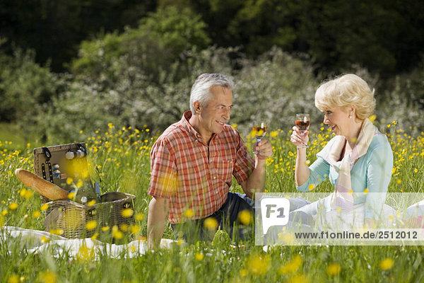 Deutschland  Baden Württemberg  Tübingen  Seniorenpaar beim Picknick  Toasting Weinglas