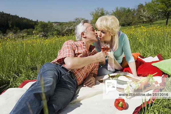 Deutschland  Baden Württemberg  Tübingen  Seniorenpaar beim Picknick  Seniorenmann küsst Seniorenfrau