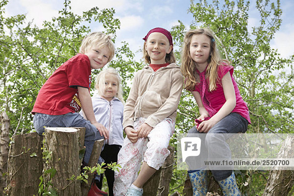 Four children in a tree