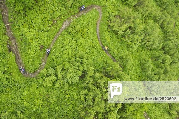 Vier Downhillfahrer auf einem Pfad  Vogelperspektive  fully_released
