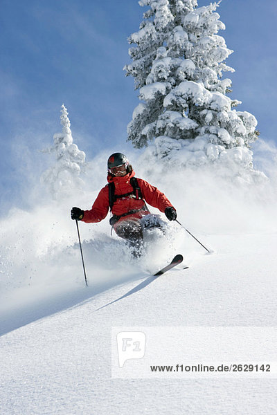 Österreich  Tirol  Kitzbühel  Pass Thurn  Freeride  Herrenabfahrt