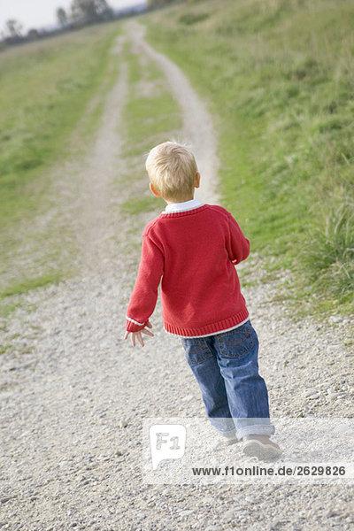 Kleiner Junge (3-4) geht über Feldweg  Rückansicht