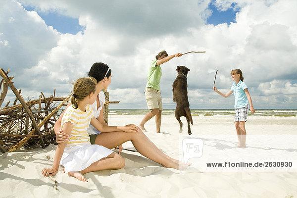 Familie am Strand spielen mit Hund
