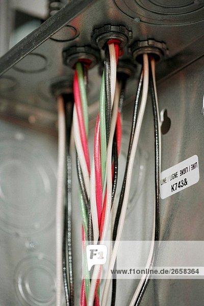 Elektrische Leitungen durch das neue elektrische Fütterung