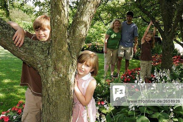 Baum,Blume,Blüte,Botanisch,Elternteil