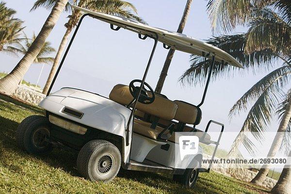 Golf-Cart auf einem Golfplatz