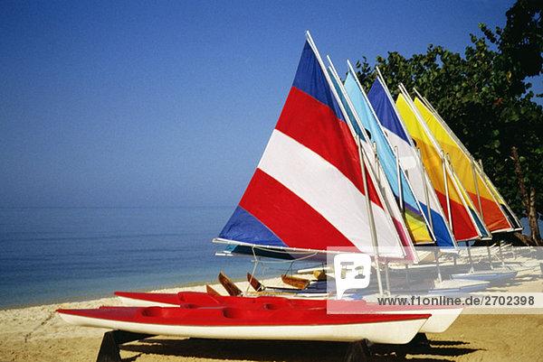 Bunten Segel auf Windsurfing Boards im Hedonismus Resort  Jamaika