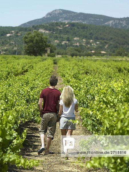 Paar Wanderung durch den Weinberg