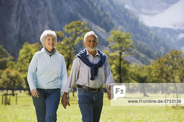Österreich  Karwendel  Ahornboden  Seniorenpaar über Wiese  Hand in Hand