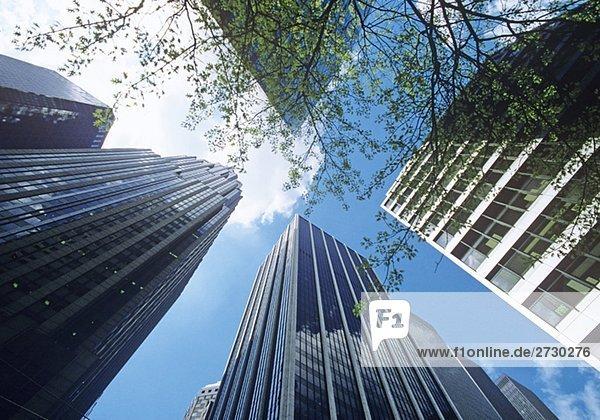 Hochhausfassaden aus der Froschperspektive  New York City  New York  USA