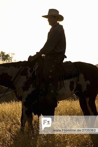 Ein Cowboy sitzt in der Abenddämmerung auf einem Pferd. Ein Cowboy sitzt in der Abenddämmerung auf einem Pferd.