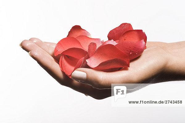Hand mit Rosen patals