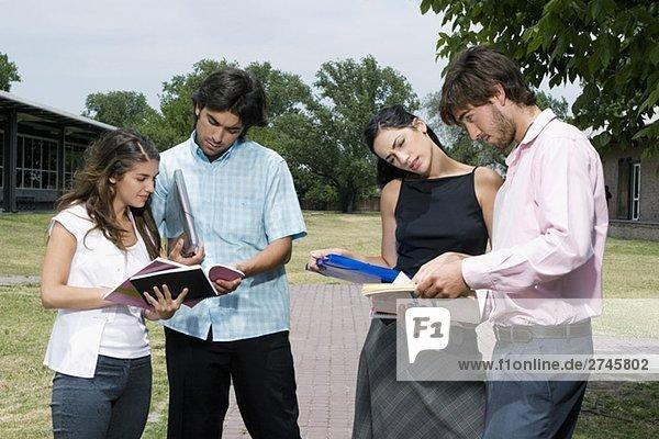Vier Studenten stehen und diskutieren in einem Rasen