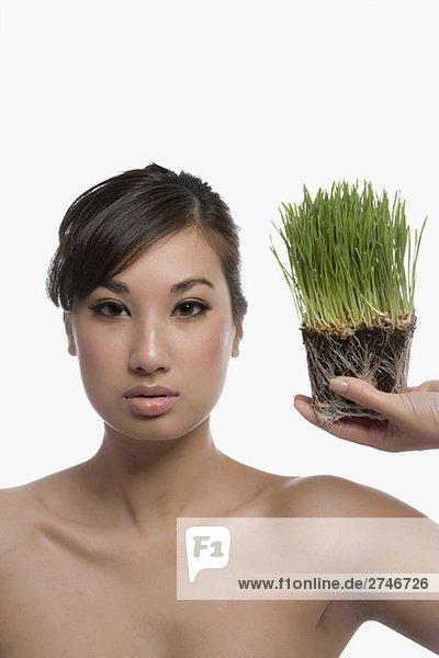 junge Frau junge Frauen Weizengras Portrait halten
