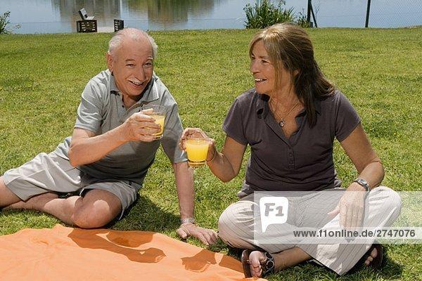 Senior paar Gläser von Saft bei Picknick halten