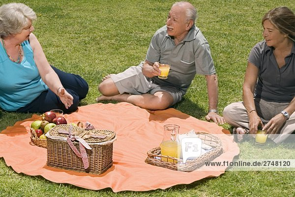 Erhöhte Ansicht der drei ältere Leute bei Picknick