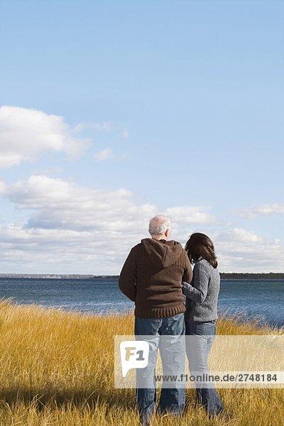 Rückansicht des ein paar Standing am Strand mit Arm in arm