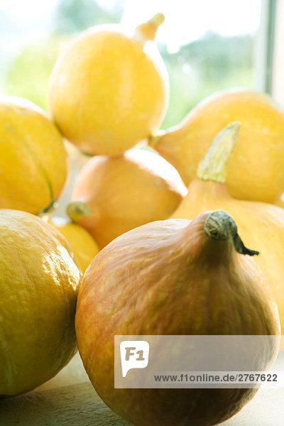 Speisekürbis (Cucurbita Maxima) Speisekürbis (Cucurbita Maxima)