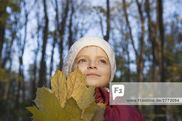 Autumn moments