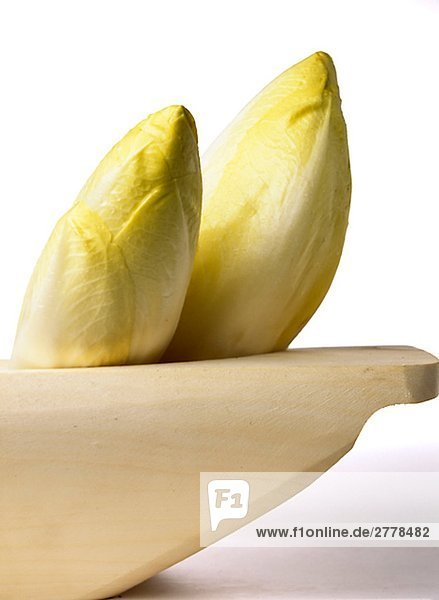 Chicorée-Salat (Cichorium intybus)