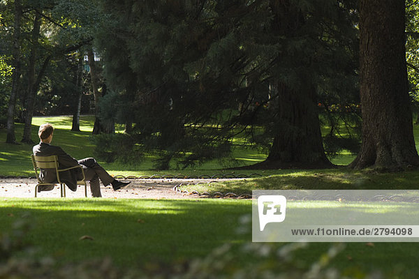 Man sitting alone in park  rear view