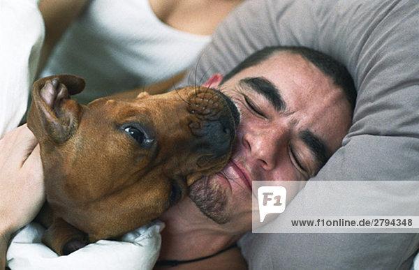 Hund leckt das lächelnde Gesicht des schlafenden Mannes